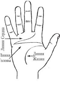 линия сердца на руке картинка